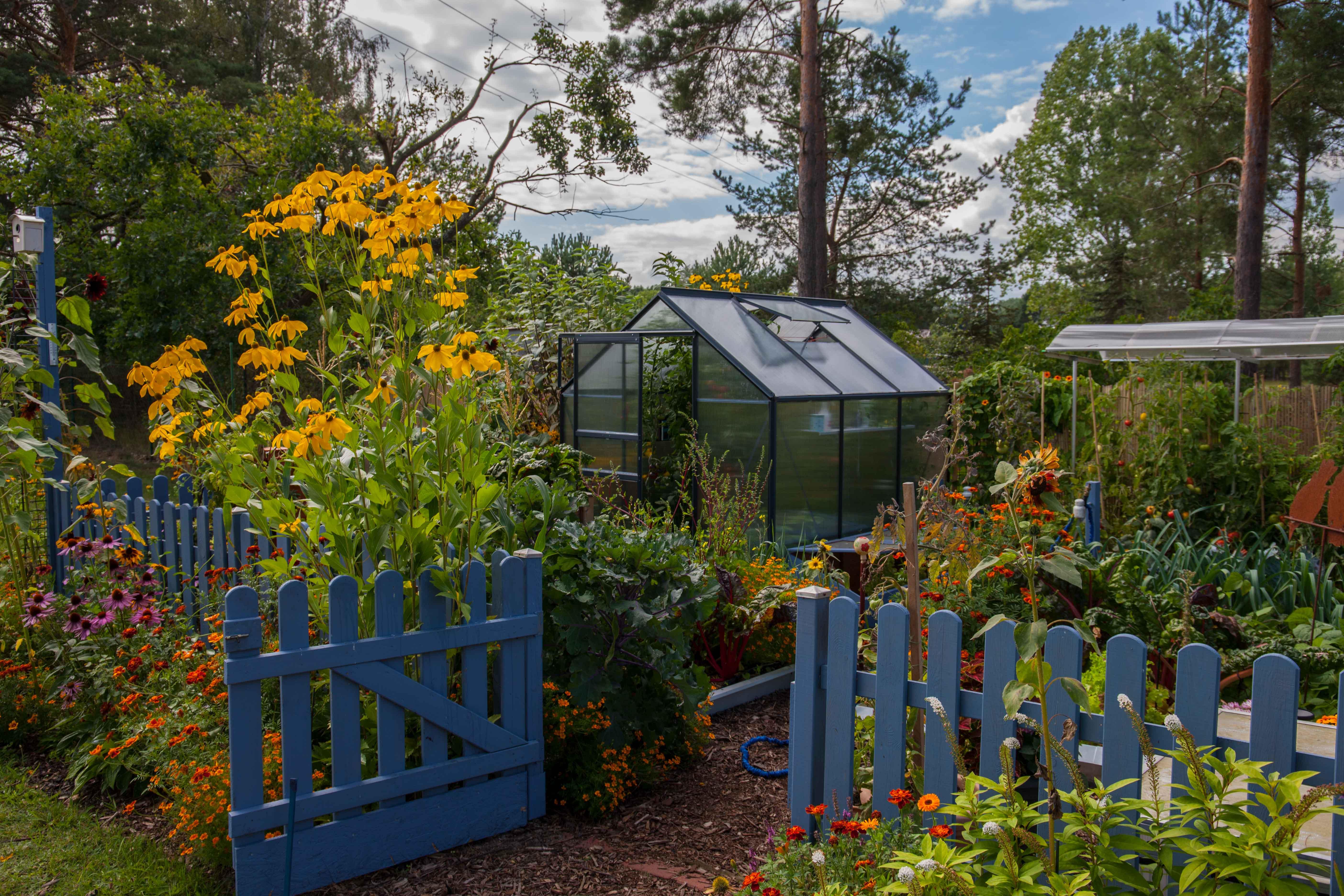 Ausgezeichnete Sommergarten Traume Vitavia
